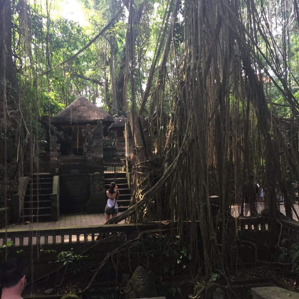 If you're looking for the right temple run meets Indiana Jones-esque vibe, the Monkey Forest is your place!