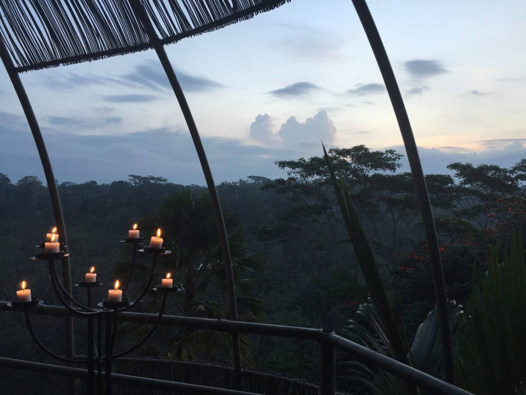 The serene views from the Bird's Nest at Kupu Kupu Barong