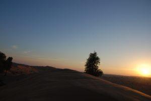 Alma_desert