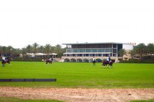Desert Palm Per Aquum|Polo match