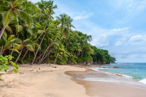 choosing a Caribbean island for your holiday cover image