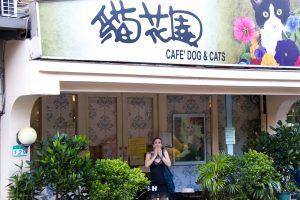 Cat cafe exterior in Taipei
